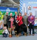 INTERNATIONAL DOG SHOW 2018 EKATERINBURG